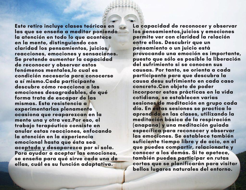 Retiro-de-Meditación-para-reducir-el-sufrimiento-mental